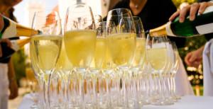 party catering picobello Hellevoetsluis